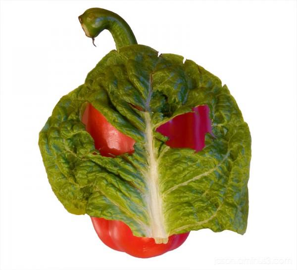 pareidolia pepper