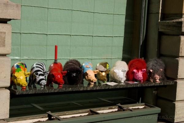 pig street art