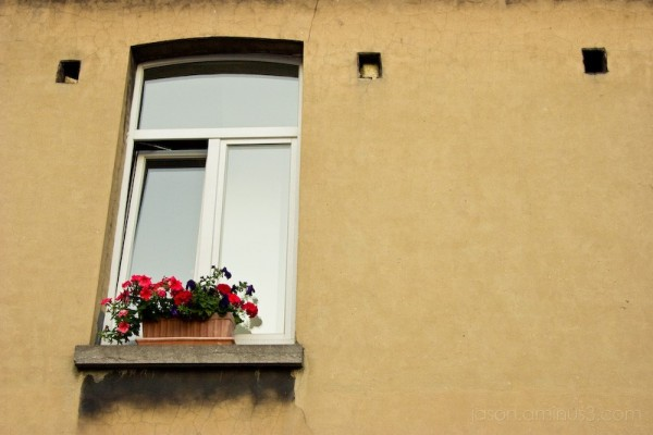 flowerbox window wall