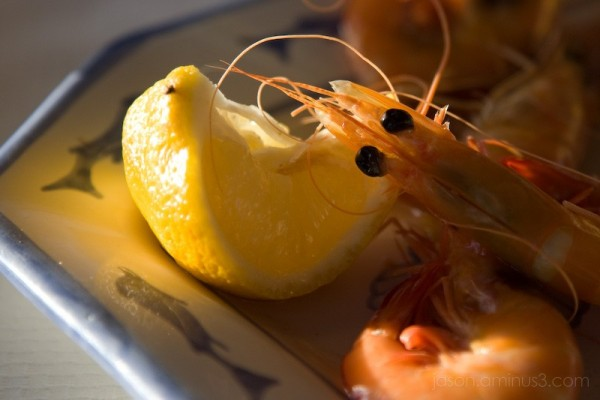 shrimp lemon pillow