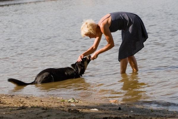 Vltava dog and woman