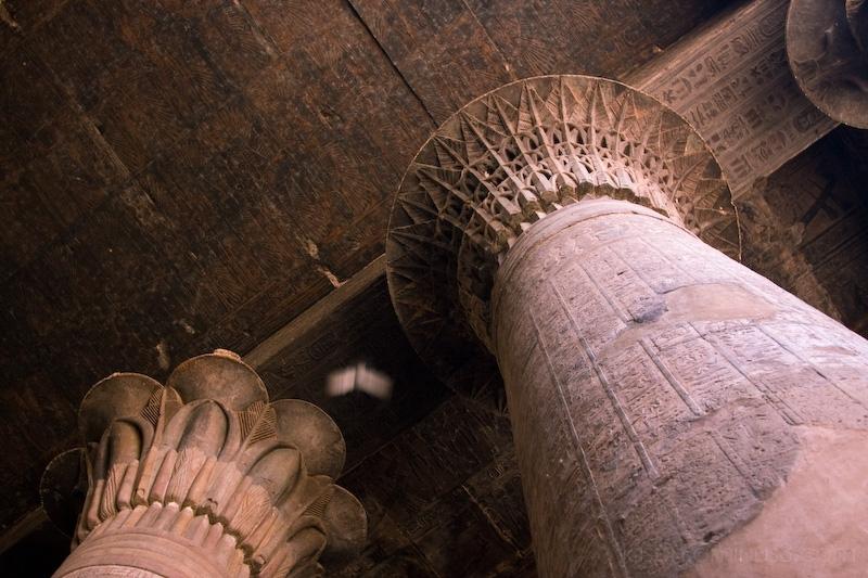 bird column Egypt Edfu