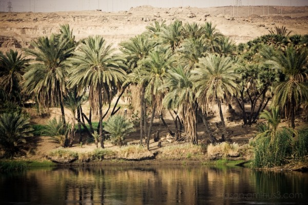 Along the Nile (pt 1)