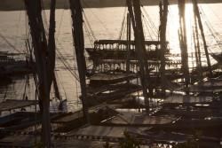 aswan boats backlight