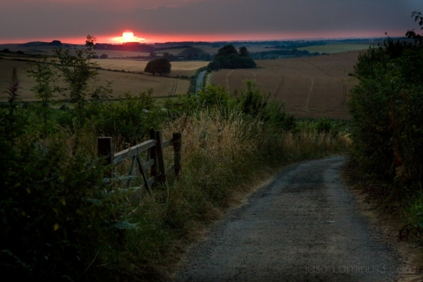 west woods Wiltshire sunset