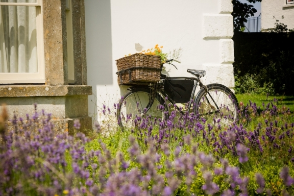 Avebury bike B&B