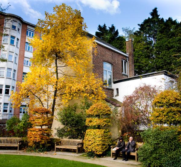 Tenbosch Park Autumn