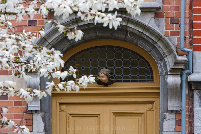 bloom door