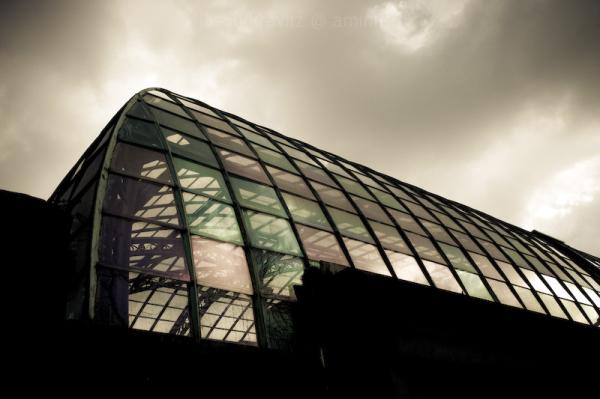 royal greenhouse belgium
