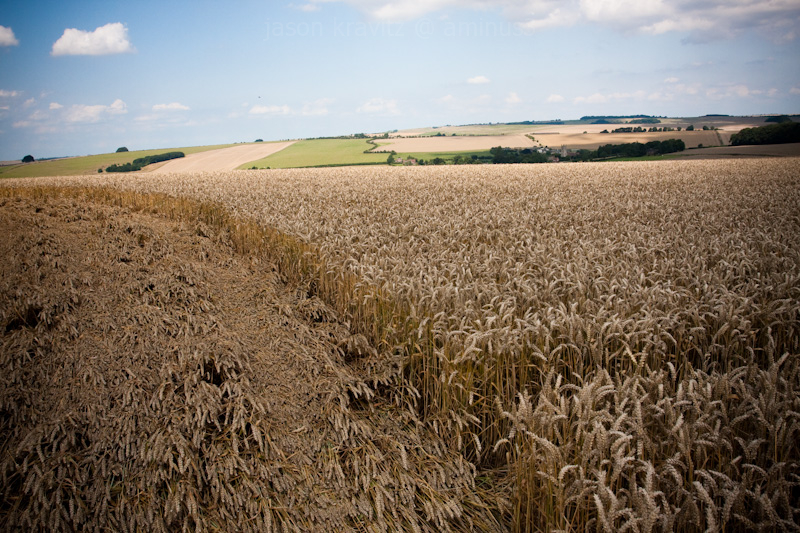 crop formation