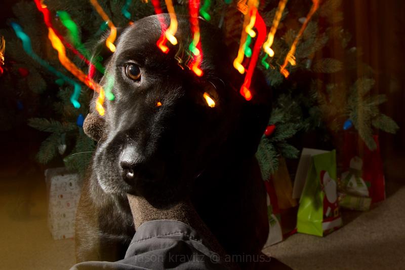 christmas light zoom blur mike
