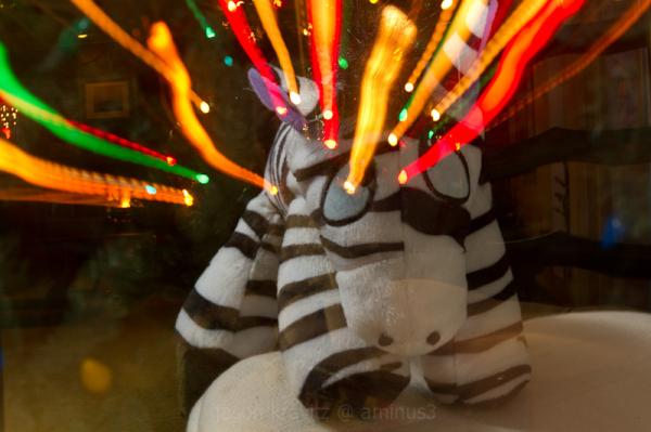 Zebra Laser Eyes