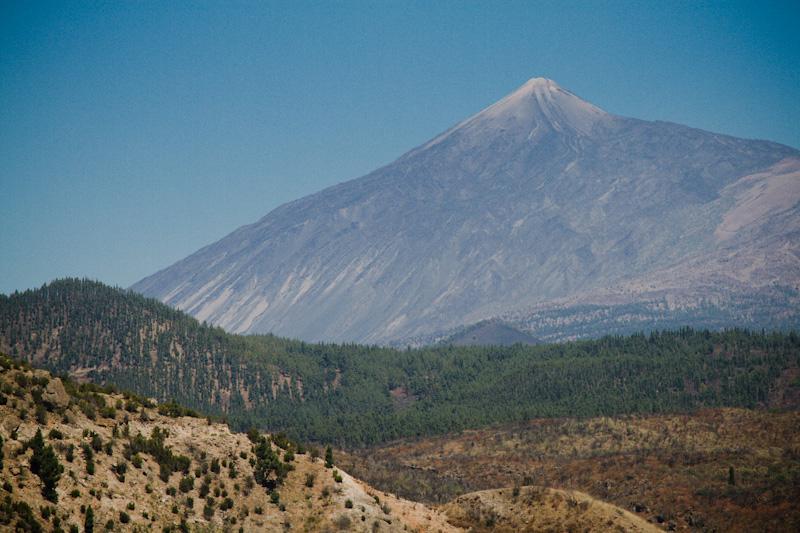 pine tree volcano