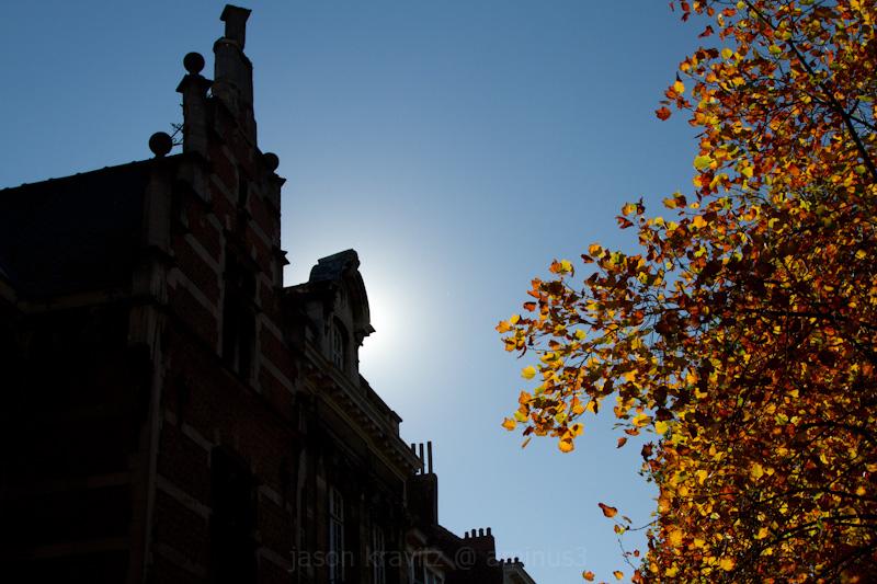 autumn brussels