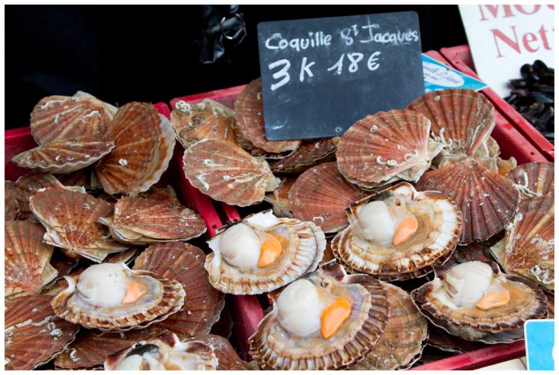 france shellfish