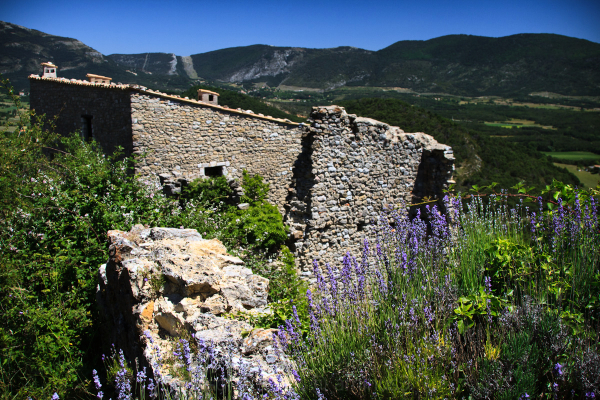 Lavendar and Old Stone