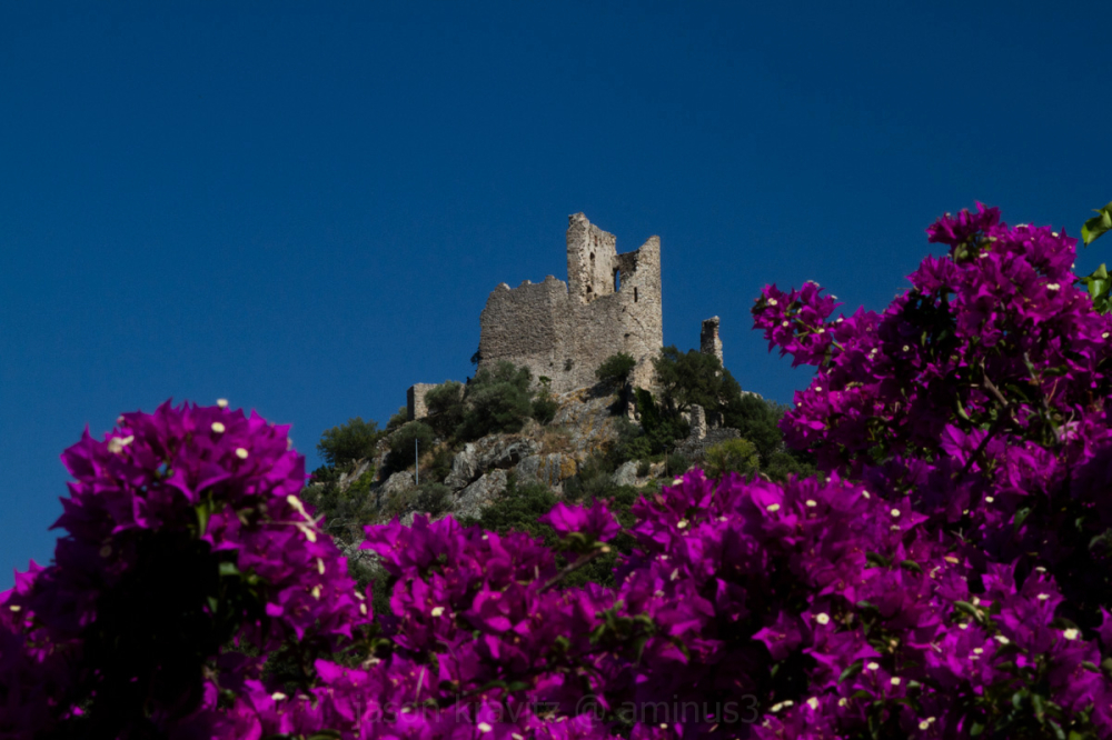 Grimaud castle with Bougainvillea