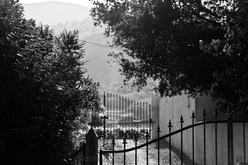 gate to vineyard