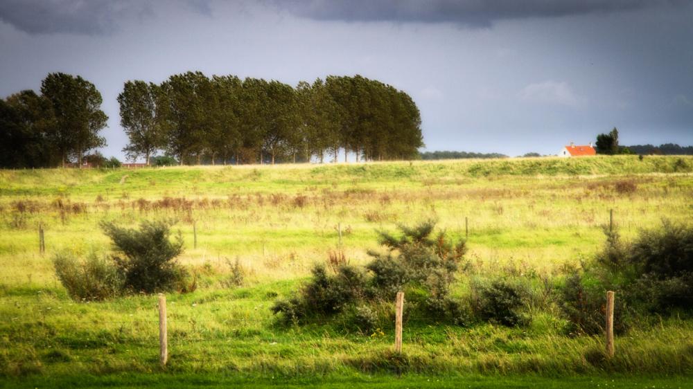cadzand countryside