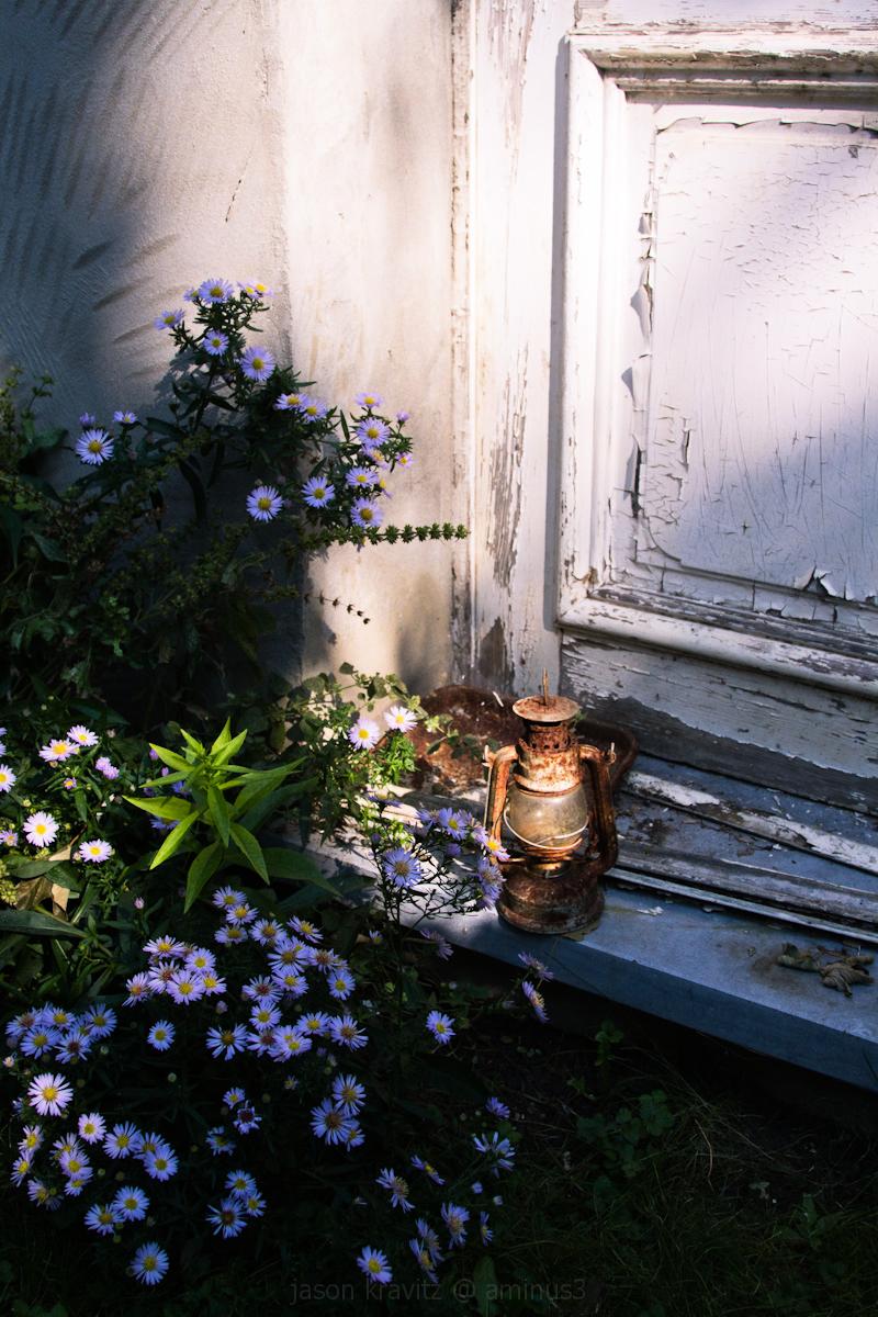 still life door