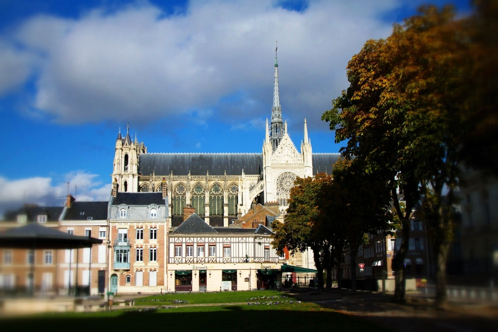 Amiens Cathedral in Autumn