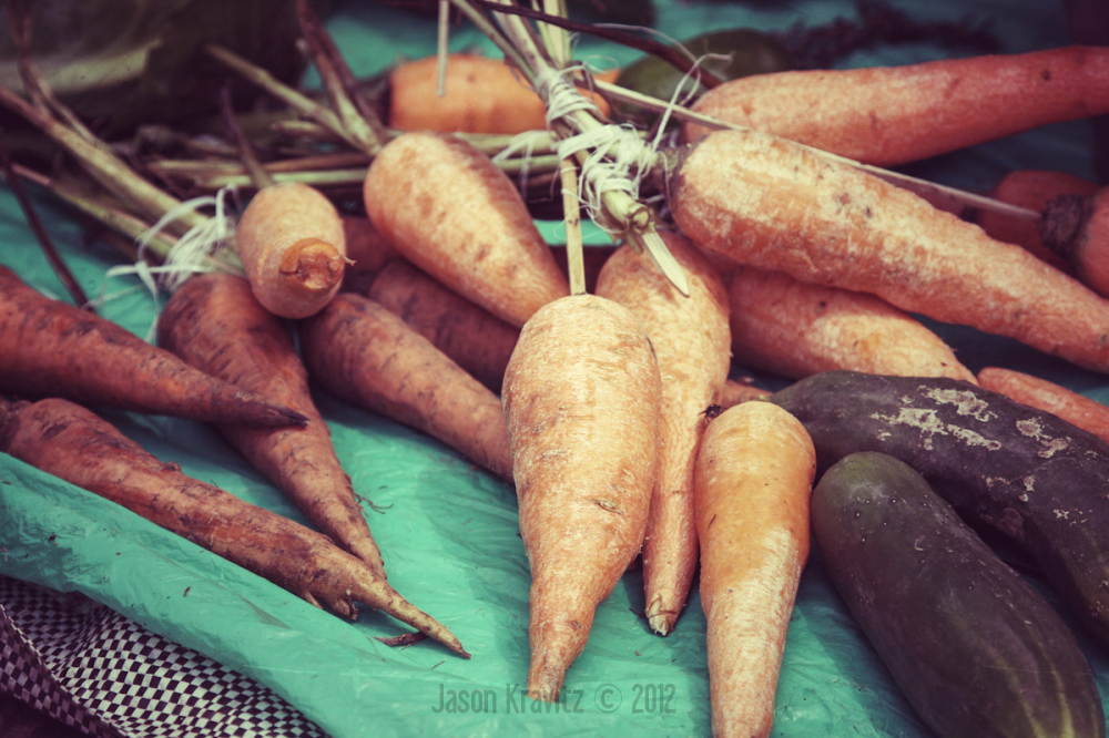 vintage carrot photo