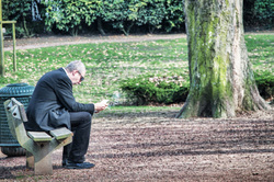 reading man on a bench