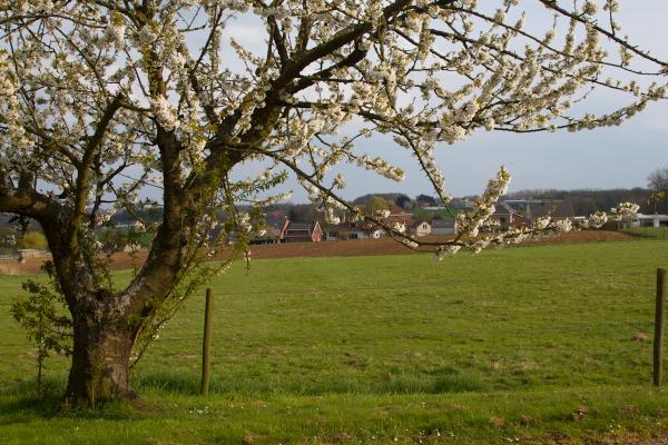 Springtime in Duisburg