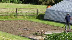 farmer belgium