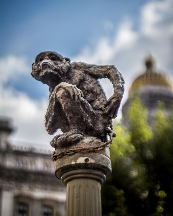 justice palace monkey