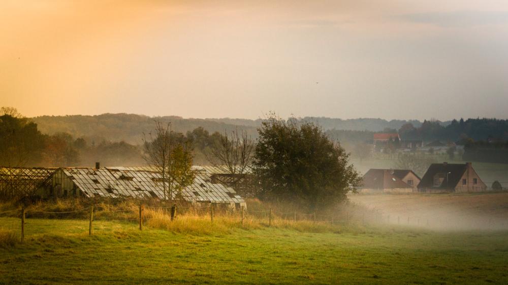 glass house fog