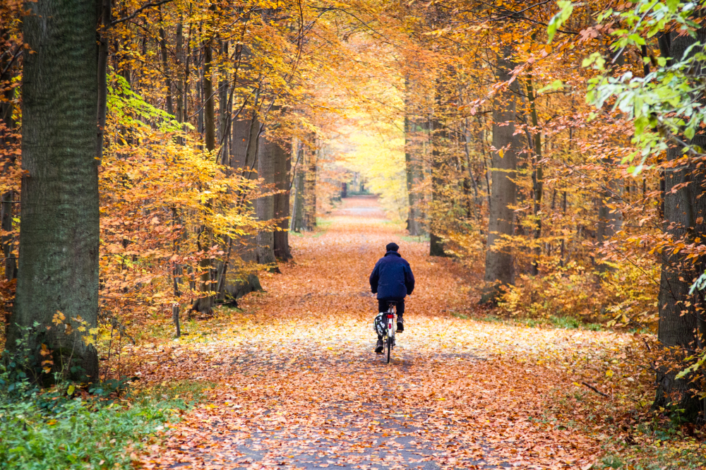 autumn bike ride