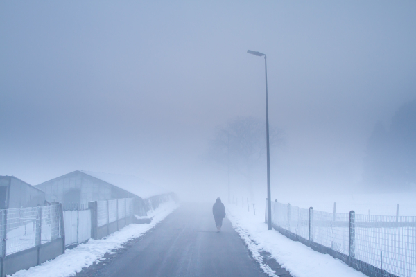 snow fog atmosphere