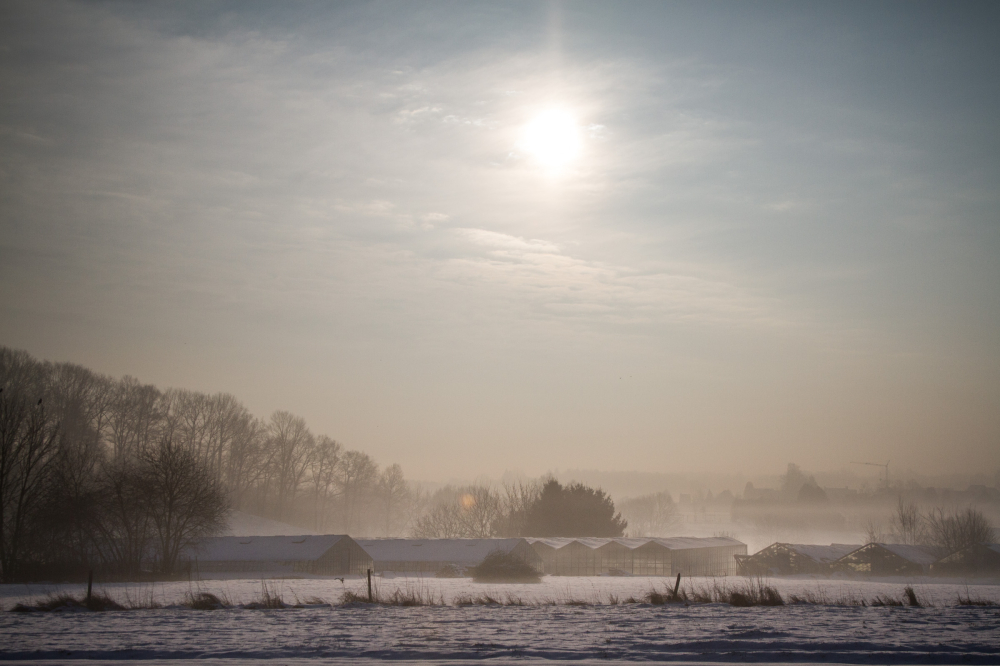 sun snow fog