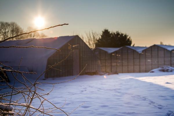 sunrise in Eizer
