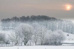 waning winter