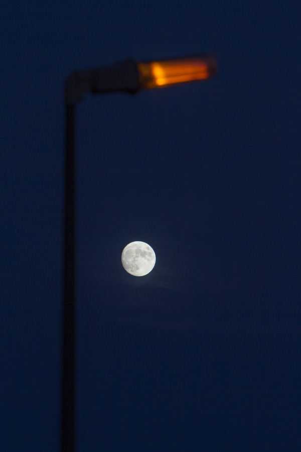 moon light post
