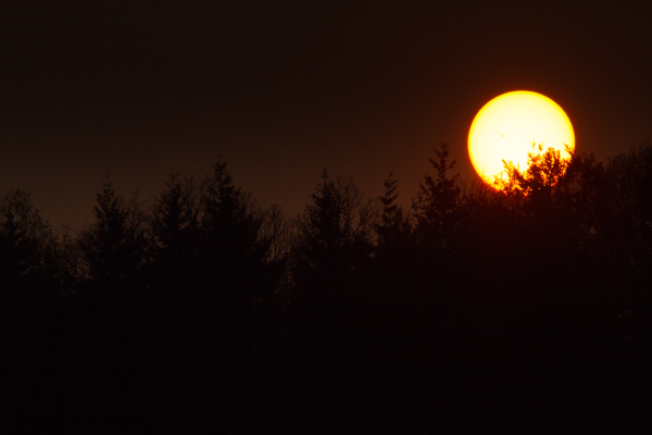 large sun sunset