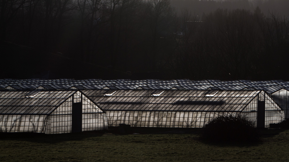 sunlight through glass house