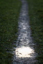 puddle path