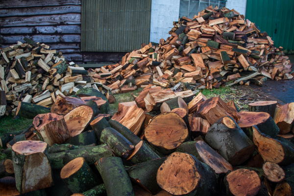 splinter in a wood stack