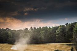 Belgian harvest