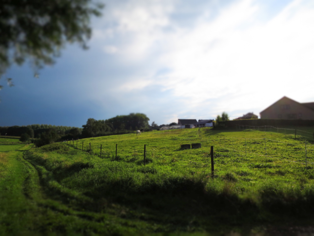 mini Belgian countryside
