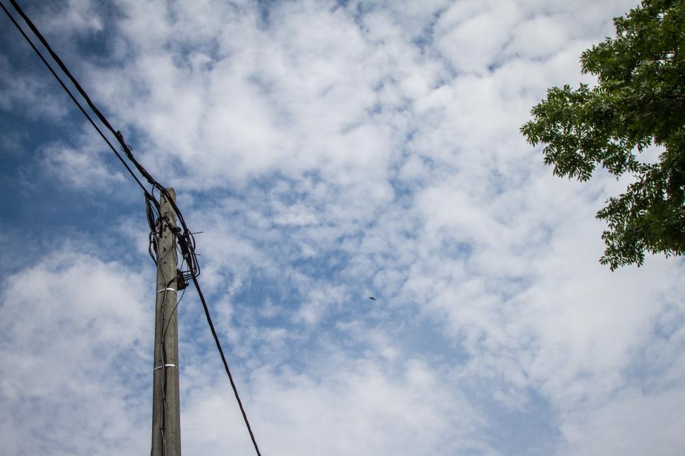 sky cloud bird