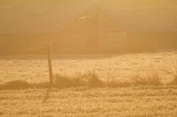 frosty morning Belgium
