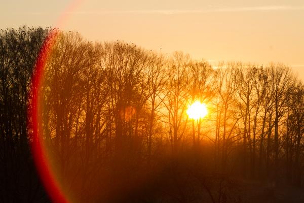 wintery sunrise