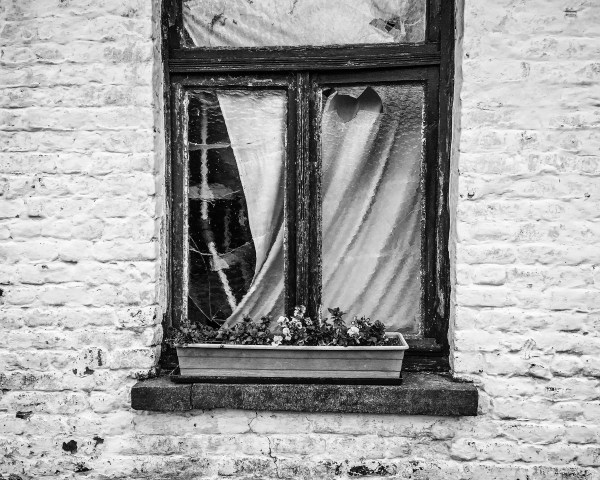 weathered window texture