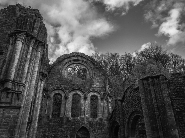 abbey iii