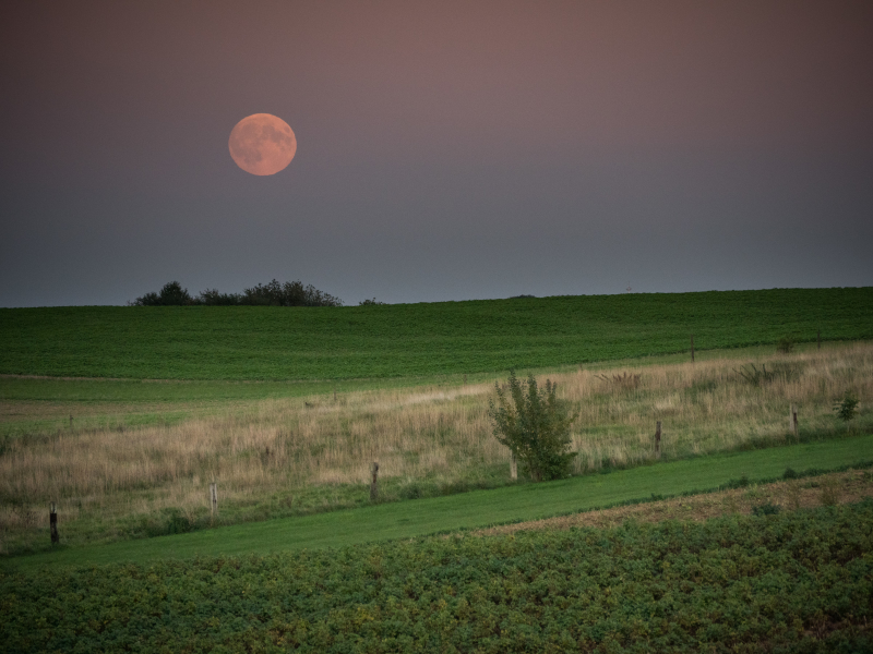 super blood moon rising over Belgium