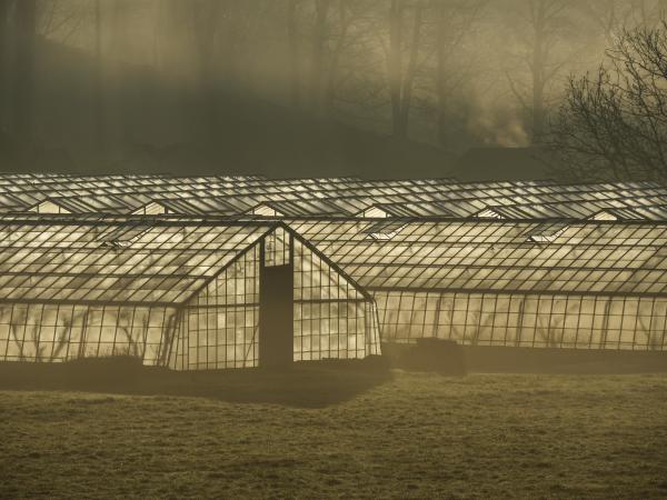 glass house illumination belgium